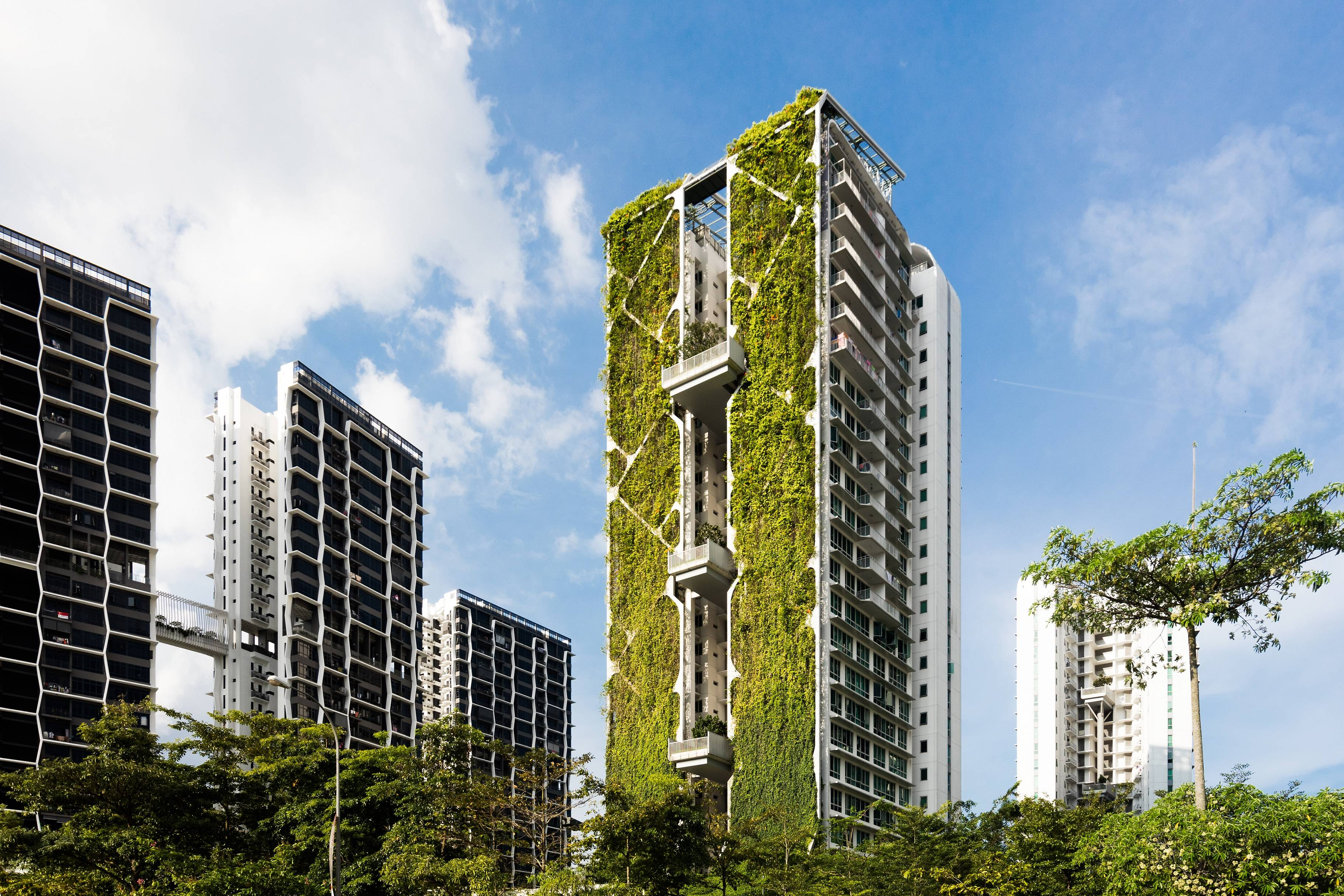 More Urban Farms Rooftop Gardens In Singapore With